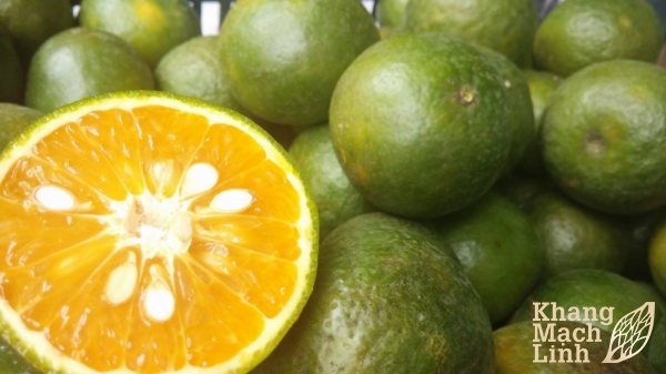 Lời khuyên dinh dưỡng cho bệnh nhân bị viêm mao mạch dị ứng