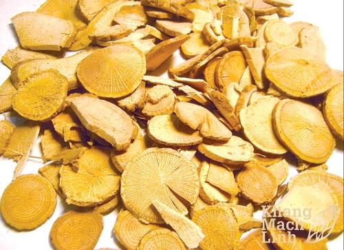 Công dụng chính của từng thảo dược trong Khang Mạch Linh
